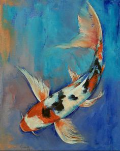 Sanke Butterfly Koi - Michael Creese