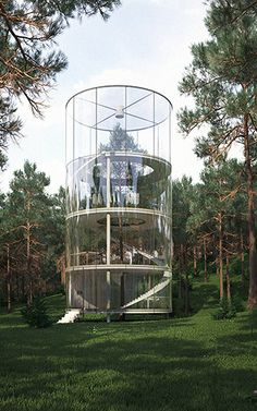 This Literal Treehouse Is A Glass House Built Around An Entire Tree | Co.Exist | ideas + impact