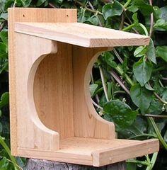 Mourning Dove Nesting Box- I need one of these. Mourning Dove Nesting Box- I need one of these. Bird Nesting Box, Nesting Boxes, Bird House Feeder, Diy Bird Feeder, Mourning Dove Nest, Dove House, Birdhouse Designs, Birdhouse Ideas, Bird House Plans