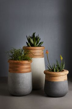 nice big planters :: wood + lightweight concrete