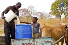 Not only is clean, safe water great for drinking, but it also allows villages to grow more crops and raise healthy cattle! #waterislife