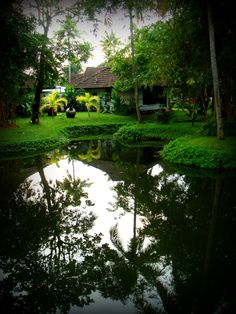 Beautiful pictures from Kerala