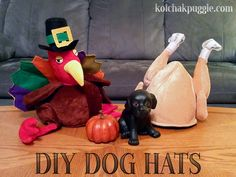 """by Heather Buzby I happened upon these adorable/hilarious turkey hats in my recent travels and naturally my first thought was: """"My dogs need to wear these."""" I knew they would need some minor alterations to be dog wearable, but it was going to be simple enough and they were cheap enough, so I grabbed them."""