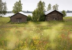 Finland Homeland, Life Is Beautiful, Countryside, Home And Family, Adventure, World, House Styles, Places, Green