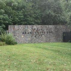 Visit the Brandywine Zoo