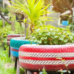 40 Smart Ways to Use Old Tires - Bored Art Garden Ideas Using Tires, Tire Garden, Garden Web, Balcony Garden, Tire Planters, Recycled Garden, Old Tires, Garden Equipment, Colorful Plants