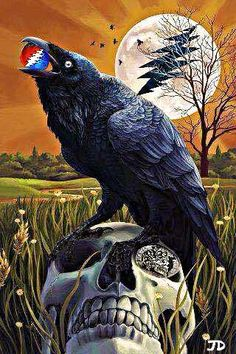 """""""it's the same story the crow told me"""" GD lyrics& art// uncle johns band"""