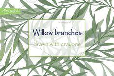 Willow branches by Alex.artline on @creativemarket