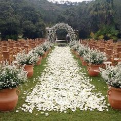 Beautiful scenery and arch to walk down for your wedding day!