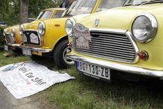We all live in a yellow Classic Mini! Classic Mini, Classic Cars, Mini Countryman, Mini Coopers, Car In The World, Mini Me, Car Car, Antique Cars, Jumper