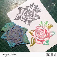 Arts&Photoscrap: Rosa de Sant Jordi