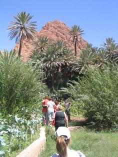 Grupo Insolit en la ruta de las kasbash en el sur