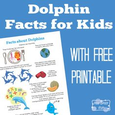 There are so many interesting Dolphin Facts for Kids! Let's learn with facts about dolphins for kids! Many fun facts for kids (and yourself) to explore! And to make things easier for the kids also grab a free printable they can save and combined with other printables make their own book of facts! I love...Read More »
