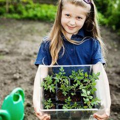 Workshop: Kinderen eten uit eigen tuin