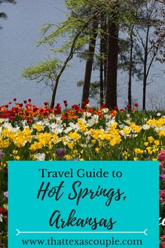 Considering a trip to Hot Springs, Arkansas, USA?  This travel guide outlines the top things to do, including The World's Shortest St. Patrick's Day Parade and the historic Hot Spring bath houses!  #hotsprings #arkansas #worldsshortestparade  via @https://www.pinterest.com/thattexascouple