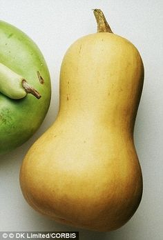 The corpeus luteum, an ovarian follicle that maintains a pregnancy, contains high lebels of betacarotene - the orange pigment found in carrots and butternut squash