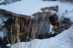 Waterfeature,Winter Landscape, Gardening, Landscape, Landscape Design by Alpine Gardens, Photography by Arik Solberg