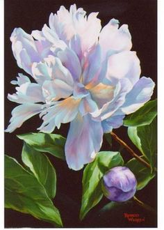 """Daily+Paintworks+-+""""Pastel+Peonies""""+-+Original+Fine+Art+for+Sale+-+©+Barbara+Wagner"""