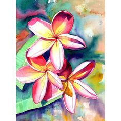 Plumeria Watercolors, Hawaiian Flowers, Tropical Flowers, Frangipani... ❤ liked on Polyvore featuring home, home decor, wall art, painted wall art, flower stem, faux flower stems, flower home decor and flower wall art