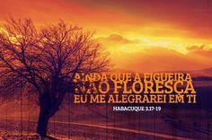 Se Jesus é por nós, que mal nos poderá  Fazer o homem? Um ótimo dia! Acesse:  kanay-doxa.blogspot.com.br