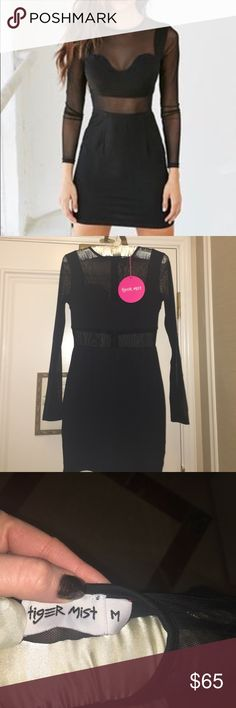 NWT Black Mesh Body Con Mini Dress Hot date night dress! Purchased from Nasty Gal website and never worn! Tags still attached. Size M. True to size. Nasty Gal Dresses Mini