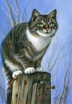 .kitty by Irina garmashova.