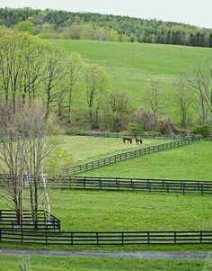 an Upstate New York Farmhouse Gorgeous pasture in NY's Hudson Valley.Gorgeous pasture in NY's Hudson Valley. Country Farm, Country Life, Country Living, Country Style, Country Roads, Upstate New York, Vie Simple, Hudson Valley, Country Scenes