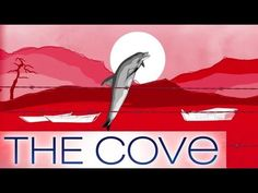 What is The Cove? - Support The Cove Dolphins and Stop Taiji Dolphin Killing..... WE WATCHED THIS IN MY MARINE BIOLOGY CLASS, AND HAS IMPACTED MY LIFE DRAMATICALLY SINCE WE DID!