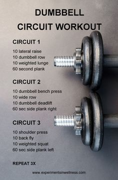 dumbbell workout routine Research shows that working out with free weights is a more effective workout. This dumbbell workout routine works all your major muscles. Fitness Workouts, Exercise Fitness, Tabata Workouts, Fitness Tips, Circuit Training Workouts, Kettlebell Circuit, Exercise Equipment, Fitness Wear, Health Fitness
