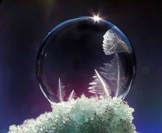 """まるでクリスタル!冬ならではの""""シャボン玉アート""""が美しすぎる − ISUTA(イスタ)オシャレを発信するニュースサイト"""