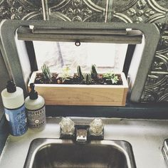 Love the tiny vanlife window garden