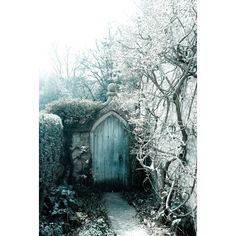 The Realm of Eternal Ice ❤ liked on Polyvore featuring backgrounds, photos, other, buildings and winter