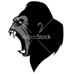 Angry gorilla head vector on VectorStock