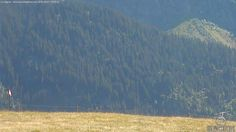 Foto Bollettino Neve Les Contamines: http://www.bollettinoneve.net/bollettino-neve-les-contamines.html Bollettino neve Alpi settentrionali francesi #neve #montagna #snowboard #snow #mountain #sciare #inverno #ski #skislope #skier #skiing #winter #alpi #alps #appennini alps   italy   ski chalet   snowboarding   heritage site   Snow Style   Snow photography   Snow Falls   mountain photography   snowy mountains   mountain photography   Mountains and snow   snow mountain   mountaineering…