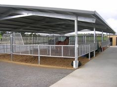 Great for horses on stall rest or coming off stall rest! bridges_004.jpg 800×600 pixels