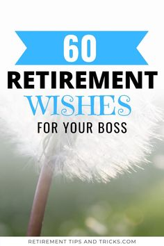 Retirement Messages For Boss, Best Wishes For Retirement, Retirement Wishes Quotes, Retirement Speech, Funny Retirement Gifts, Game Ideas, Party Ideas, Message For Boss, Wishes Messages