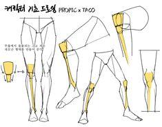(1) 타코작가 (@taco1704) / Twitter Leg Reference, Body Reference Drawing, Art Reference Poses, Anatomy Reference, Drawing Tips, Anatomy Sketches, Anatomy Drawing, Anatomy Art, Leg Anatomy