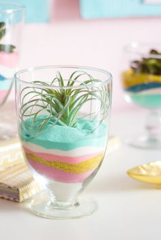 Succulent Sand Art Terrariums Create these modern terrariums with just colored sand and faux air plants or succulents!Create these modern terrariums with just colored sand and faux air plants or succulents! Mini Terrarium, Terrarium Cactus, Suculentas Diy, Gold Sand, Sand Art Crafts, Easy Crafts, Easy Diy, Bricolage, Terrariums
