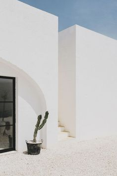 masseria moroseta, puglia ostuni minimal architecture, cactus and blue skies