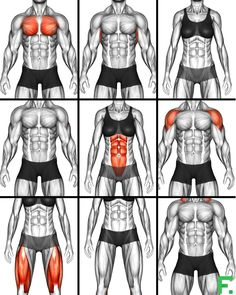 Fitness Workouts, Abs And Cardio Workout, Intense Cardio Workout, Gym Workouts For Men, Workout Routine For Men, Gym Workout Videos, Gym Workout For Beginners, Fitness Workout For Women, Chest Workouts