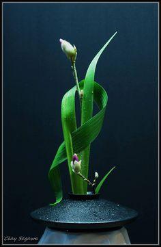 magnífico arreglo de Ikebana.