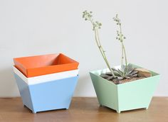metal planter, colored planter, planter, succulent, powder coated