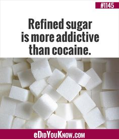 So it's not 'sweet-tooth' rather sugar addiction. Wtf Fun Facts, Crazy Facts, Random Facts, True Facts, Interesting Information, Interesting Facts, Proper Nutrition, Fitness Nutrition, You Dont Say
