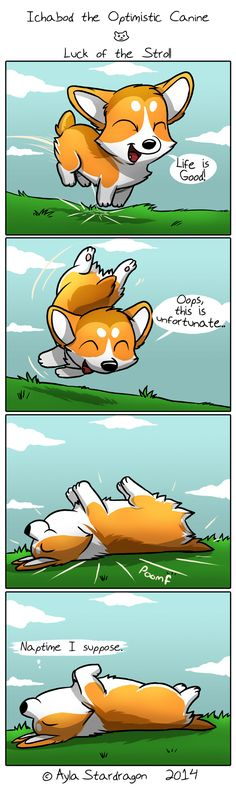 Ichabod the Optimistic Corgi