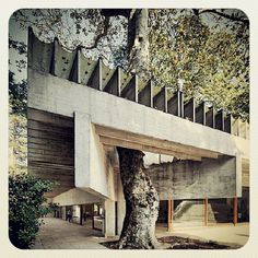 Mixing nature with architecture. nice. Sverre Fehn - NORDIC PAVILION