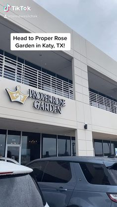 Tea and Treats in Katy, TX Chocolate Crepes, Crepe Cake, Milk Tea, Macarons, Restaurant, Treats, Outdoor Decor, Fries, Garlic