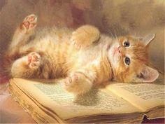 Preguiça de ler hoje...