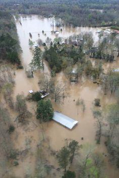 Louisiana 2016. This makes me so sad.