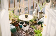 How to Grow an Eco-Friendly Balcony or Rooftop Food Garden - The Herb Exchange Best Online Thrift Stores, Composting 101, Benefits Of Gardening, Deck Pictures, Clem, Balcony Plants, Tiny Balcony, Balcony Gardening, Love Your Home
