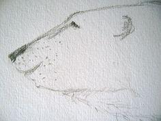 Zeichnen: Poesie des Bleistifts